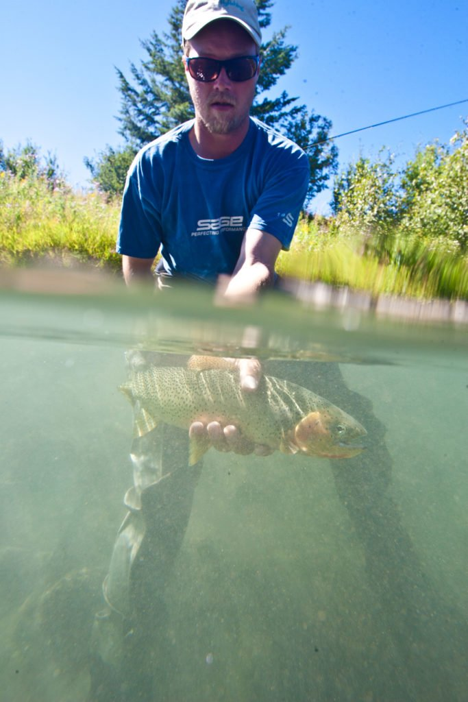 Guide showing a cutthroat trout caught in the Elk River in front of the Fernie Fox Hotel, Fernie BC